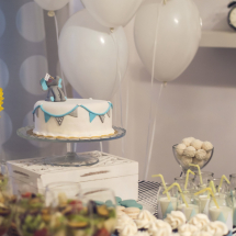 baby showers, baby shower party cluj, petrecere baby shawer, organizare baby shower party, servicii baby shower party